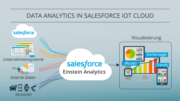 Salesforce IoT Cloud_de 3